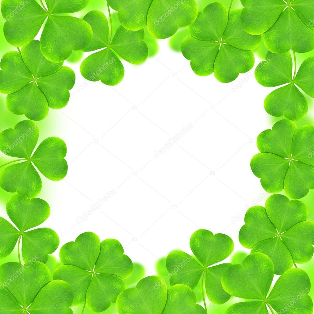 Marco de tréboles verdes — Fotos de Stock © vencav #102529464
