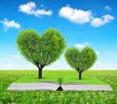 Fotografia Prenota con alberi a forma di cuore