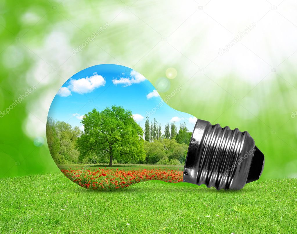 Eco bulb in grass.
