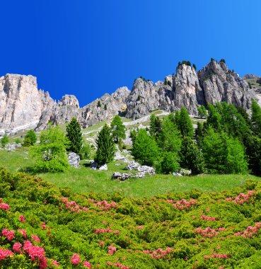 Beautiful mountain landscape in Dolomites