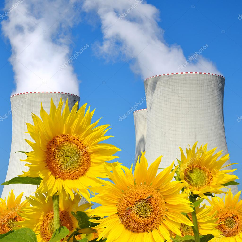 Nuclear power plant Temelin with sunflowers