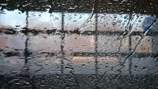 Auto v mytí aut