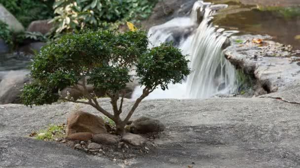 Japonská zahrada a říční toky