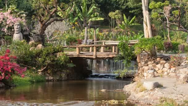 Řeka teče přes džungli