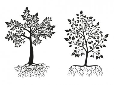 Black trees and roots silhouettes with leaves. Vector set