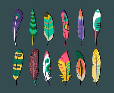Attractive Feathers Icon Set Designs