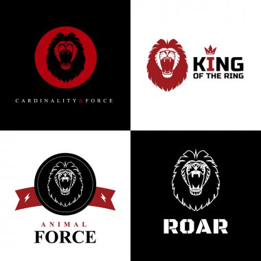 Lion Logo Graphic Designs