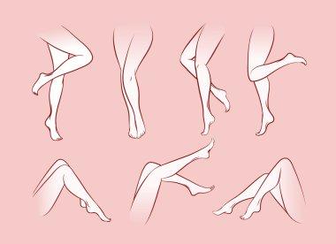 Vector woman legs