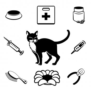 Cat veterinary clinic icons