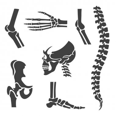 Human joints vector set. Orthopedic and spine symbols