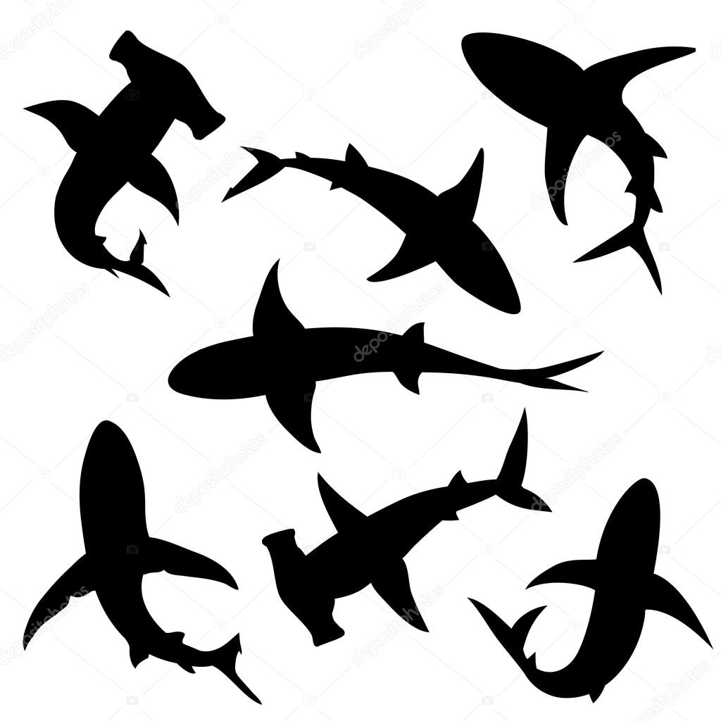 Shark vector silhouettes