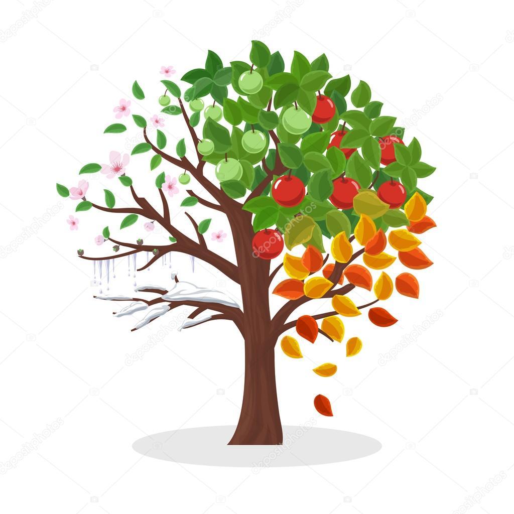 Дерево времена года. Вектор дерево Времена года ...