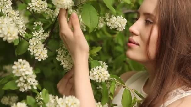 Woman inhales the smell of blooming bird cherry