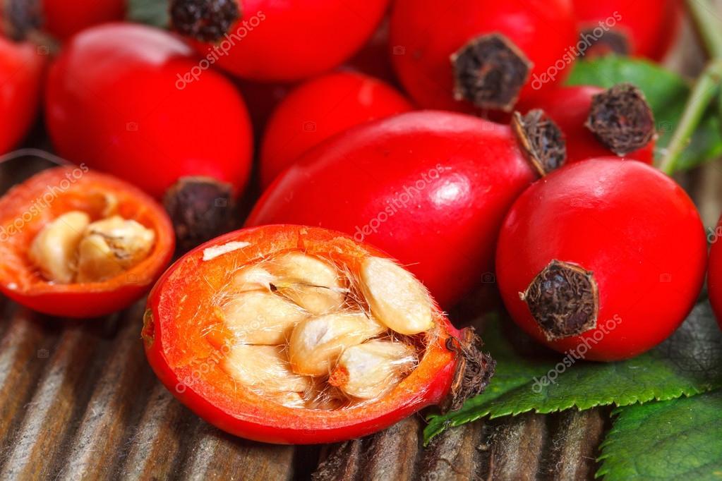 фото шиповник плоды