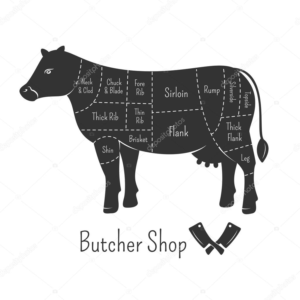 British cuts of beef diagram and butcher shop design stock british cuts of beef diagram and butcher shop design stock vector pooptronica
