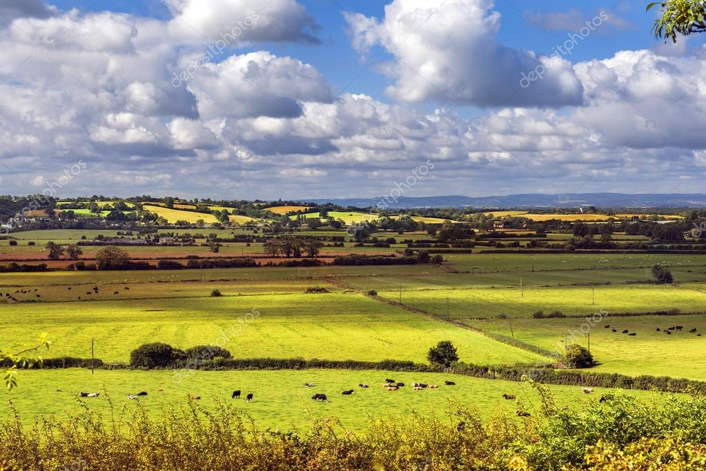 rural scenic view of green fields, Salisbury, England