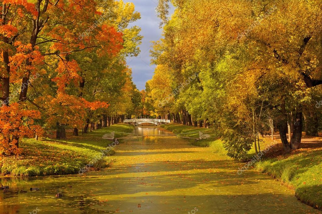 golden autumn in Catherine park, Tsarskoye Selo