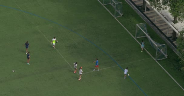 Boys and girls play football on a green field and scores a goal in gates
