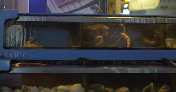 Water tanks with fresh sea food in the store