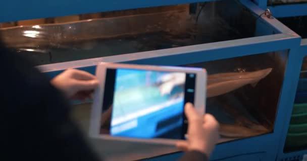 Žena s tablet Pc s fotografii olihně v obchodě akvárium