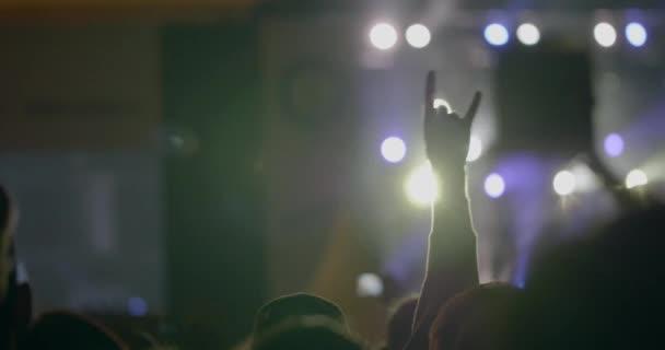 Közönség, szabadtéri éjszaka rock koncert