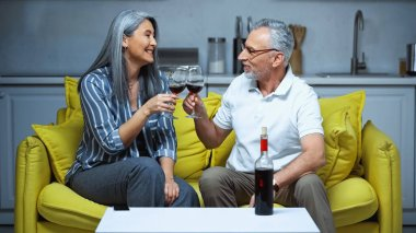 Cheerful senior multicultural couple clinking wine glasses on couch at home stock vector