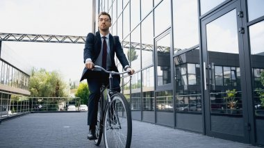 Full length of businessman in formal wear riding bicycle near building stock vector