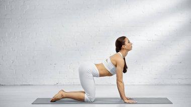 Kadın yoga minderinde kedi pozu veriyor.