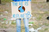 Ausgeschnittene Ansicht von Freiwilligen mit Plakat mit Globus und es gibt keine Planet b-Inschrift, Ökologie-Konzept