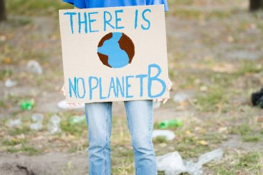 Cropped view of volunteer holding placard with globe and there is no planet b inscription, ecology concept stock vector
