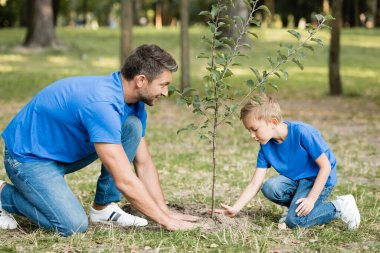 Side view of father and son planting young tree in park, ecology concept stock vector