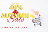 Top view of toy shopping bags and small cart near up to 40 percent, autumn sale lettering on white background