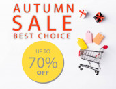Top view of small gift boxes and shopping bags near toy cart and autumn sale, best choice lettering on white background