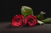 zwei rote Rosen auf schwarzem Hintergrund, Bestattungskonzept