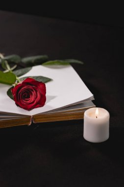 Red rose on holy bible near candle on black background, funeral concept stock vector