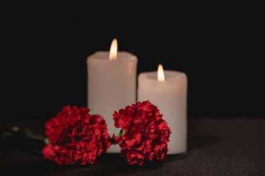 Red carnation flowers and candles on black background, funeral concept stock vector