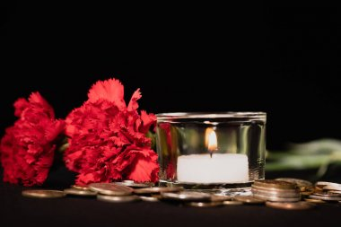 Red carnations, candle and coins on black background, funeral concept stock vector
