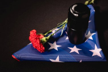 Red carnation, ashes and american flag on black background, funeral concept stock vector