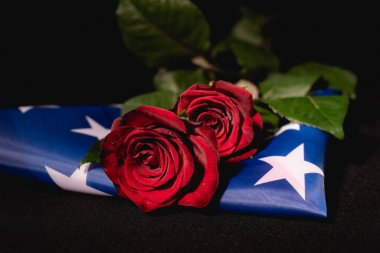 Red roses and american flag on black background, funeral concept stock vector