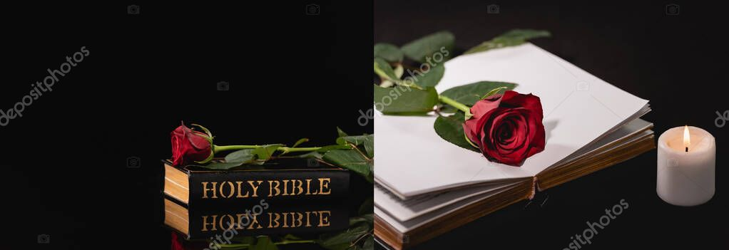 Collage of red rose on holy bible on black background, funeral concept, banner stock vector