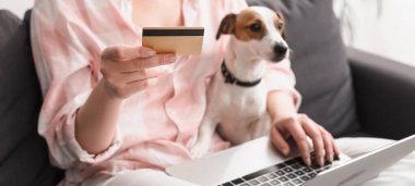 partial view of young woman holding credit card near dog and laptop while online shopping at home, banner