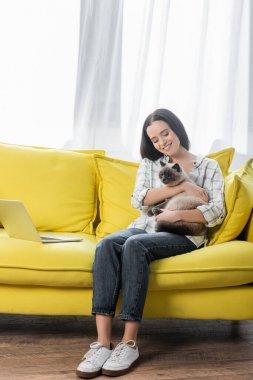 Gülümseyen serbest yazar dizüstü bilgisayarın yanında oturuyor ve pofuduk kediye sarılıyor.