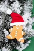 perníkový muž v Santa klobouku na jedlové větvi s dekorativním sněhem