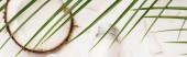 vrchní pohled na kokosovou půlku a vločky v blízkosti láhve s domácím krémem pod palmovými listy, banner