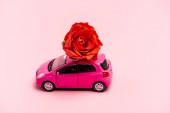 játék autó és vörös rózsa rózsaszín háttér