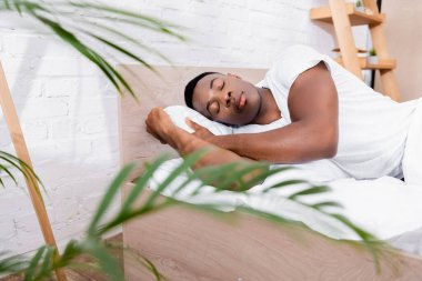 African american man sleeping on bed near plant on blurred foreground stock vector