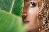 közelkép a szőke nő nedves haj és zöld levél