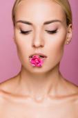 krásná blondýnka s perfektní pletí a růže květina v ústech izolované na růžové