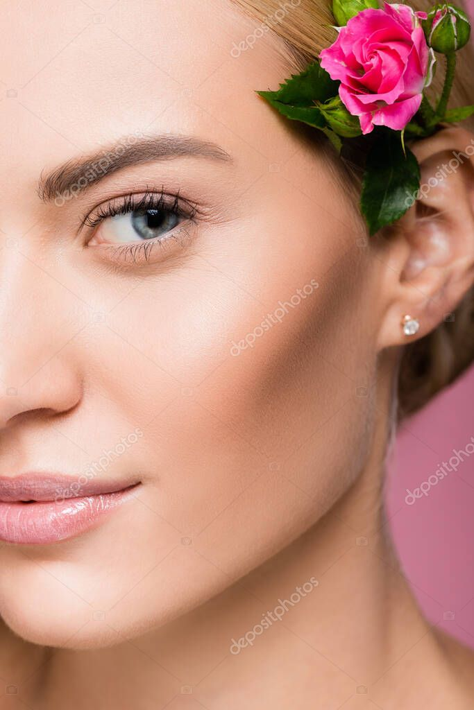 Closeup of beautiful blonde woman with perfect skin and rose flower in hair isolated on pink stock vector
