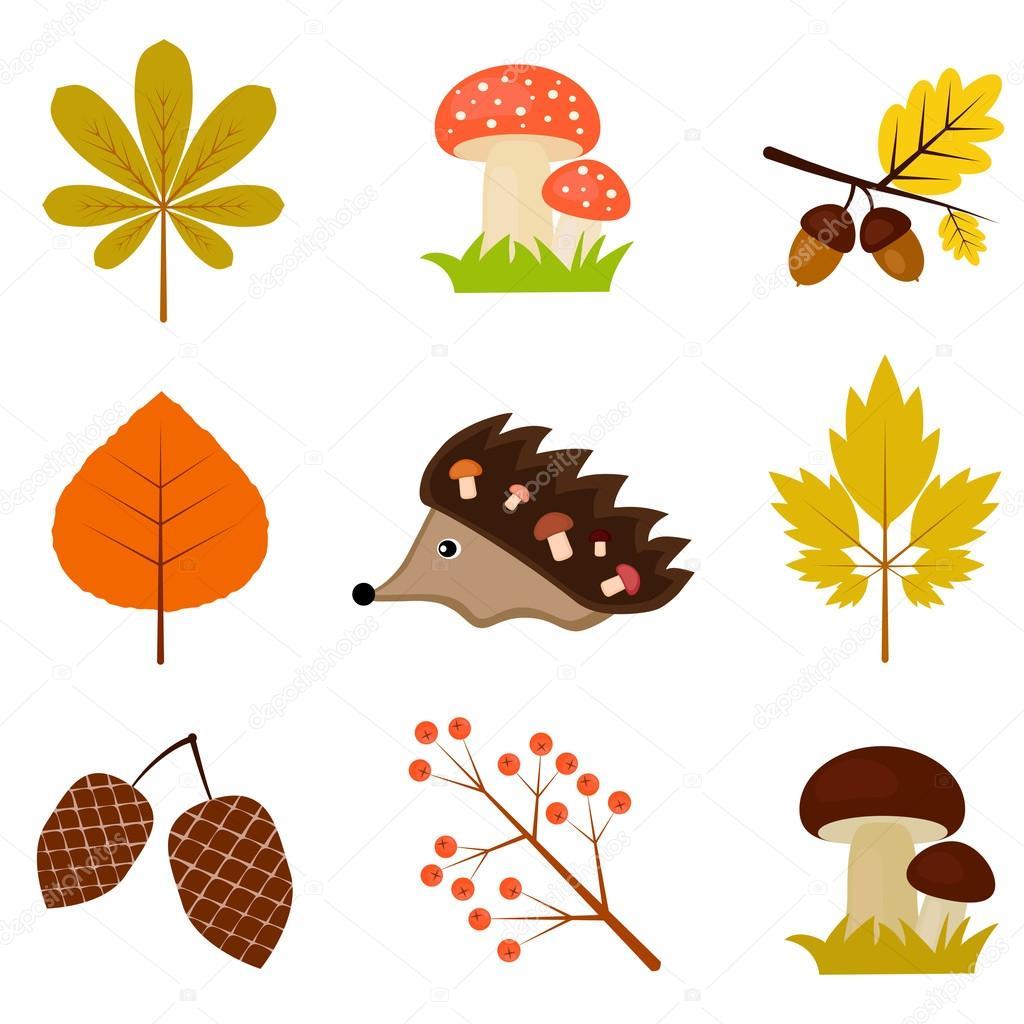 Set of autumn pictures